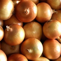 Onions  Brown 500gm