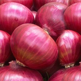 Onions  Red 500gm