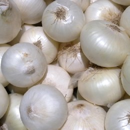 Onions  White 500gm
