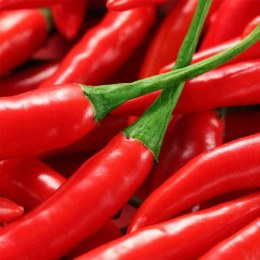 Chillies Red Cayenne 100gm