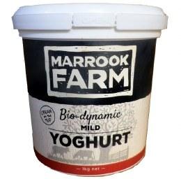 Yoghurt Mild Plastic Tub 1kg Large