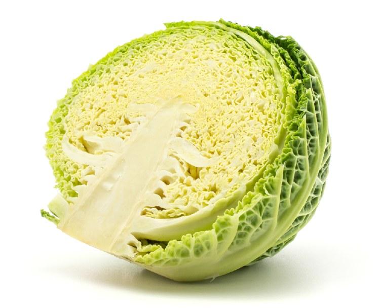 Cabbage Savoy Half