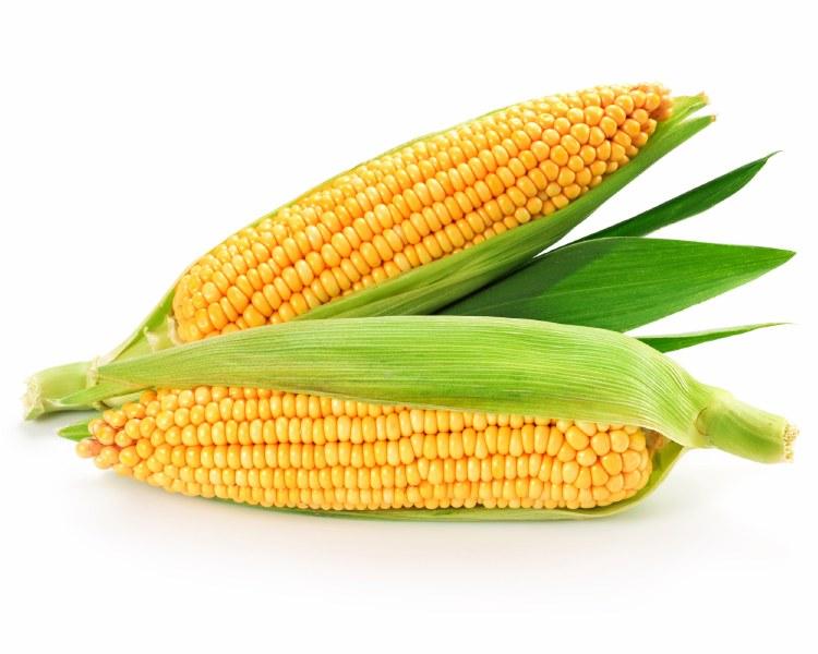 Sweet Corn 2pack Second Nature Organics