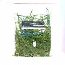 Wheat Grass 100G Bag