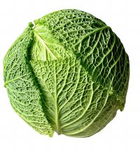 Cabbage Savoy Whole