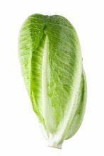 Lettuce Cos Each