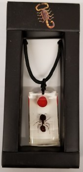 Lucky Bean & Ant Necklace