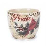 Praise Mug w/ Cardinal