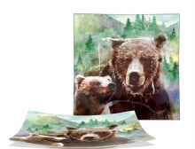 Bear Square Plate 9.5""