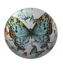 Butterfly Glass Paperweight