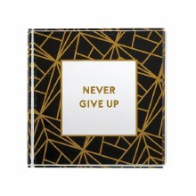 Never Give Up Glass Paperweigh