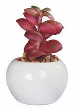 Artificial  Cactus -Round Pot