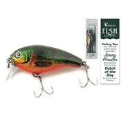Fishing Lure Shallow Diver