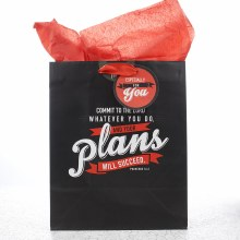 Plans Will Succee Gift Bag Med