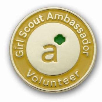 Ambassador Volunteer Pin