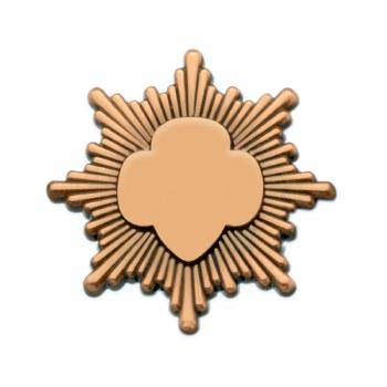 Bronze Award Pin