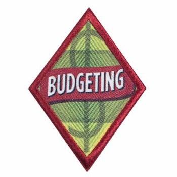Cadette Budgeting Badge