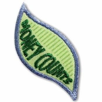 Daisy Money Counts Badge