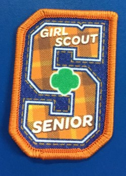 Girl Scout Senior Fun Patch