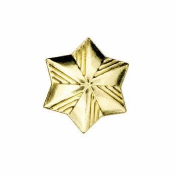 Girl Scout Membership Star