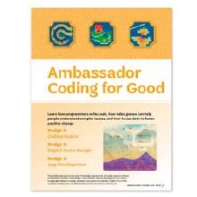 Ambassador Coding for Good Bad