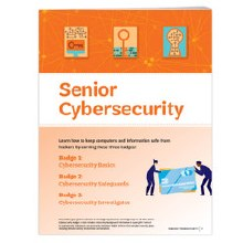 Senior Cybersecurity Badge Req