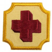Ambassador First Aid Badge