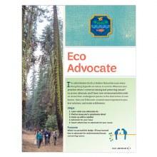 Ambassador Eco Advocate Requir