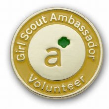 Ambassador Volunteer Pin