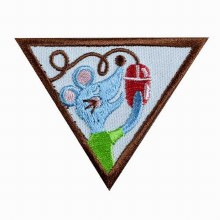 Brownie Computer Expert Badge