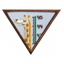 Brownie My Best Self Badge