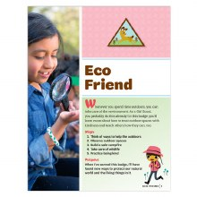 Brownie Eco Friend Badge Requi