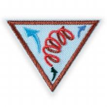 Brownie Leap Bot Design Challenge Badge