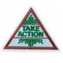 Brownie Take Action Award Badge