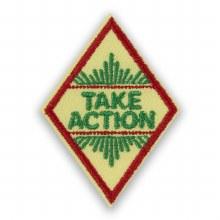 Cadette Take Action Award