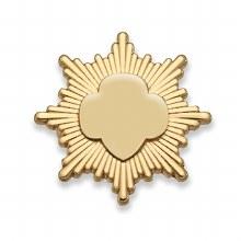 Gold Award Pin - Goldtone