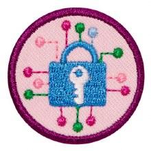Junior Cybersecurity Investiga