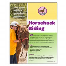 Junior Horseback Riding Badge Requirements