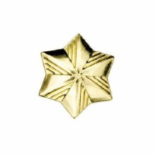 Girl Scout Membership Star