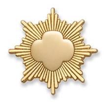Mini Parent Gold Award Pin