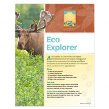 Senior Eco Explorer Badge Requ