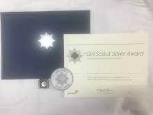 USAGSO Silver Award Packet