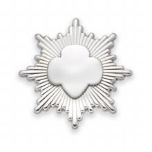 Silver Award Pin