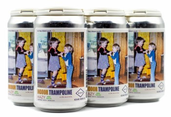 Ozark Indoor Trampoline Hazy IPA 6pk 12oz Can