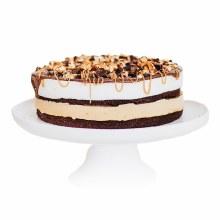 "Loblolly Turtle 6 Inch Ice Cream Cake 6"""