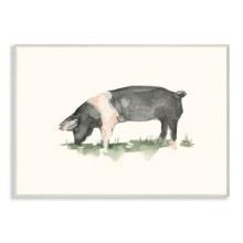 Farm Pig Grazing