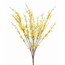 Yellow Forsythia Bush