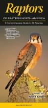 Raptors Of North America Book