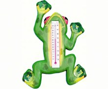 Frog Thermometer W/suction Cup