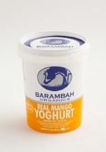 Yoghurt Mango 500g Tub